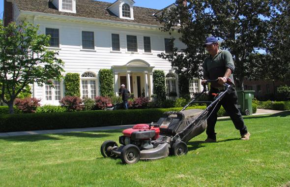 servicio-de-jardineria